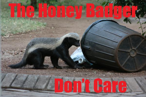 who is honey badger randall. Dave Honey Badger Randall